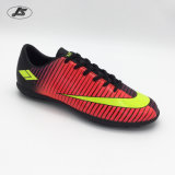Ботинки футбола самого лучшего качества напольные для людей Zs-024TPU#