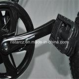 20inch 48V/20.4ah 뚱뚱한 타이어 E 자전거 (RSEB-507)