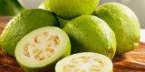 Qingshuoからの最上質のGuavaの葉のエキスの粉