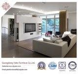 Kreative Hotel-Möbel für Vorhalle-Sofa-Möbel stellten ein (YB-B-42)