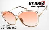 Мода солнечные очки со специальными советы км17265