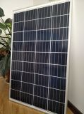 高性能36のセル145W太陽電池パネル