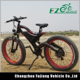 Una bici elettrica potente di 48 V 11.6 ah con i pneumatici surdimensionati