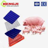 Le bétail et de la volaille cages utilisées cochon Revêtements de sol en plastique