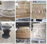 Scultura/della pietra granito/del marmo scultura intagliata mano per il paesaggio del giardino
