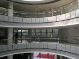 Balaustrada do vidro de Frameless da fixação da variedade do projeto do corrimão/escada