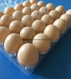 Bandeja de empaquetado de 30 de los orificios del pollo del huevo de la bandeja de gallina del huevo huevos de la bandeja 30 del huevo plástico de la categoría alimenticia