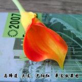L'unité centrale artificielle fleurit en gros, les zantedeschias artificiels de rose normal de contact