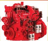 Ntc-290 Motor Cummins para maquinaria de construcción