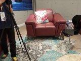 [غود قوليتي] أسلوب [أمريكن] حديثة مكسب أريكة جلد أريكة يثبت ([سبل] -9811)