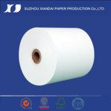 Roulis thermique de papier de caisse comptable (TM4475)