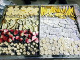 De vacuüm Drogere Apparatuur van de Vorst van het Voedsel voor Fruit/Groenten