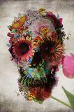 고품질 큰 주문 직사각형 두개골 예술 주석 표시