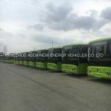 0 bus elettrici puri dell'emissione da vendere