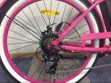 中国からの安い価格36V 250Wの電気自転車