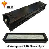 ETL Certification LED Growth Lighting for Greenhouse