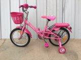 Children BicycleストロンチウムKb144王女