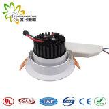Peonylighting Suppling 20W Patended LEDは良質LEDチップおよびドライバーとつく