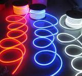 220V 120V 24V 12V RGB 네온 LED 장식적인 빛