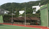Lichte Schijnwerper van het Stadion van de Verlichting van de Vloed van de LEIDENE de BinnenSporten van het Tennis 250W