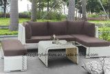 Mobiliário de Jardim de vime sofá de canto (TG-JW23)