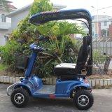 日除けが付いている屋外の2人の乗客のスポーツのゴルフカートのモーターを備えられた電気スクーター
