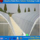 중국에 있는 직업적인 제조 플레스틱 필름 온실
