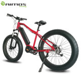 Bicicleta eléctrica de Ebike 48V 14.5ah 1000W de la ciudad