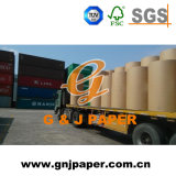 Good quality new print PAPER in roll