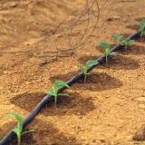 Капельное орошение в сельском хозяйстве полиэтиленовые трубы Dn20мм черный HDPE трубы