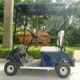1 mini cochecillo eléctrico del golf de Seater para la venta