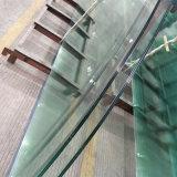 건물 유리 10mm 사려깊은 박판으로 만들어진 편평한 구부려진 유리제 가격