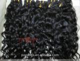 Mejor Venta de cabello humano tejiendo (PPG-L-01907)