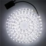 IP65屋外LEDロープライトChristmaの装飾ライト220Vは100mロールを入れた