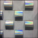 Pigmento olográfico de la INMERSIÓN de Plasti de la pintura del coche del arco iris del laser del polvo del espejo