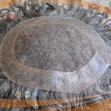 꼬부라진 회색 머리 보충 시스템 (PPG-l-0036)