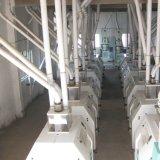 케냐에 있는 100t/24h에 의하여 자격이 되는 옥수수 축융기