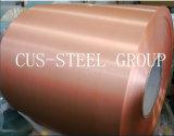 Het vooraf geverfte Blad/de Kleur van het Aluminium bedekte de Geborstelde Rol van het Aluminium met PE&PVDF met een laag