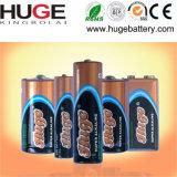 bateria alcalina do bloco industrial de 1.5V Lr6 AA