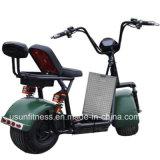 Aprovação CEE de 2018 Novo Modelo 60V 12ah 1000W Motociclo Eléctrico, Scooter Citycoco eléctrico