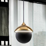 La luz moderna de la bola LED para adorna la luz pendiente casera
