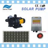 Motor dc sin escobillas 500W con bomba de piscina Solar MPPT controlador