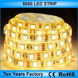 Mejor precio de 12V 60LED tiras LED SMD 5050