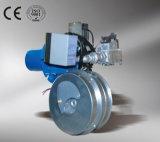 Bruciatore economizzatore d'energia di piccola dimensione del gas naturale con ad alto rendimento