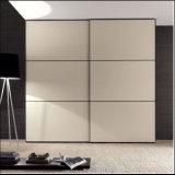 Новые раздвижная дверь типа 2015 & шкаф (ZH5096)