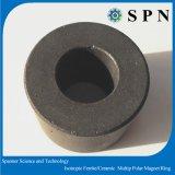 Hardferrite/de Isotrope Ringen van de Magneet van de Magneet Veelpolige Permanente voor het Stappen Motor