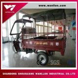 Venda de fábrica resfriado a água Rackshaw moderno motor de capota de lona não de segurança