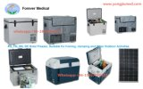 70L DC Solar Freezer, Fishing, Camping를 위한 Suitable