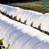 Material agricultural não tecido da estufa do baixo custo da película para o tomate