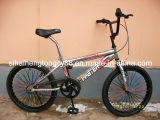 """20 """" BMX Free Style Bicycle with Face and Rear Color Spoke (SH-FS055)"""